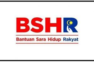 BSH 2020